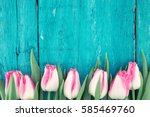 Stock photo frame of tulips on turquoise rustic wooden background spring flowers spring background greeting 585469760