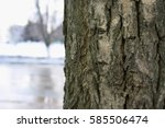 Large And Loose Texture Of The...