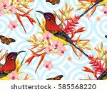 seamless summer tropical... | Shutterstock .eps vector #585568220