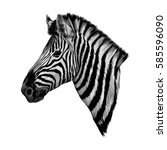A Zebra Head Profile Vector