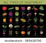 vegetables isolated set.... | Shutterstock .eps vector #585628700