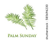 palm leafs vector icon. vector... | Shutterstock .eps vector #585696230