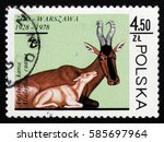 Small photo of MOSCOW, RUSSIA - FEBRUARY 19, 2017: A stamp printed in Poland shows a Alcelaphus caama, circa 1978