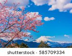 mt.fuji and cherry blossoms | Shutterstock . vector #585709334