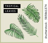 tropical palm leaves set.... | Shutterstock . vector #585861374