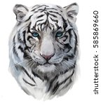 the head of the white tiger | Shutterstock . vector #585869660
