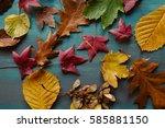 autumn leaves background.... | Shutterstock . vector #585881150