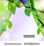 abstract nature background  | Shutterstock .eps vector #585888344