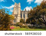 cathedral of saint john the... | Shutterstock . vector #585928310