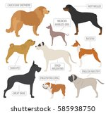 working  watching  dog breeds... | Shutterstock .eps vector #585938750