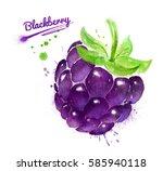 watercolor illustration of... | Shutterstock . vector #585940118