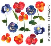 floral set. collection with... | Shutterstock . vector #585962240