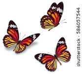 three monarch butterfly ... | Shutterstock . vector #586057544