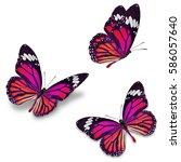 three monarch butterfly ...   Shutterstock . vector #586057640