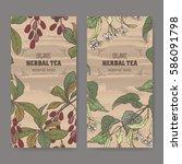 set of two color vintage labels ... | Shutterstock .eps vector #586091798