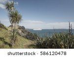 Small photo of View from Waiheke Island to a cruise ship waiting offshore - along the Te Ara Hura round the island coastal track near Matiatia Bay, with cabbage trees and flax bush