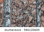 on the wall | Shutterstock . vector #586120604