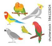 cartoon tropical parrot wild... | Shutterstock .eps vector #586122824