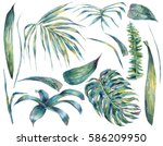 summer set of exotic watercolor ... | Shutterstock . vector #586209950