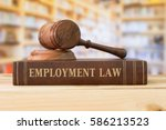 employment law books and a... | Shutterstock . vector #586213523