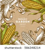 corn on the cob vintage design... | Shutterstock .eps vector #586348214