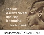 The Nut Doesn\'t Reveal The Tre...