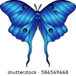 vector image of a colorful... | Shutterstock .eps vector #586569668