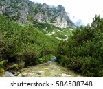Stream In High Tatras Mountain...