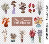 set of dry flowers bouquets in... | Shutterstock .eps vector #586643534