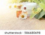 chamomile extract organic... | Shutterstock . vector #586680698