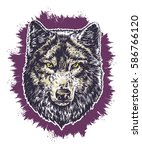 wolf dark on violet background... | Shutterstock .eps vector #586766120
