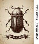 vector abstract beetle hand... | Shutterstock .eps vector #586854668