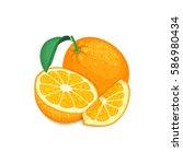 composition of tropical orange... | Shutterstock .eps vector #586980434
