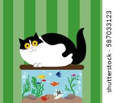 Black And  White Fat Cat With...