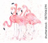 watercolor flamingos with... | Shutterstock . vector #587046194