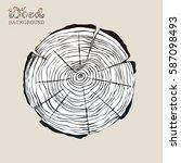 circular cross cut of tree... | Shutterstock .eps vector #587098493
