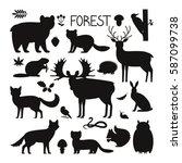 Set Of Forest Animals  Birds...