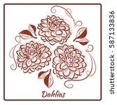 a beautiful bouquet of dahlias... | Shutterstock .eps vector #587133836