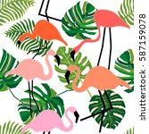 flamingo in tropical forest.... | Shutterstock .eps vector #587159078
