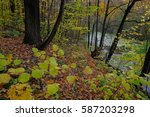 Horizontal Autumn Landscape Of...