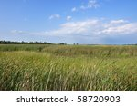Conservative Marsh Land In...