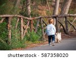 Stock photo little boy walking with a dog in the park 587358020