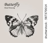 Hand Drawn Butterfly In Sketch...
