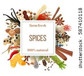 culinary spices big set under... | Shutterstock .eps vector #587410118