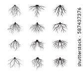 set of black roots. vector... | Shutterstock .eps vector #587437376