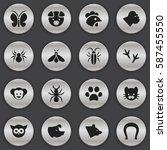 set of 16  animal icons....
