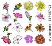 flower of summer set. tropical... | Shutterstock .eps vector #587457428