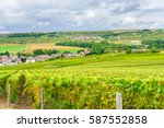 champagne vineyards at sunset ... | Shutterstock . vector #587552858