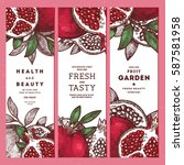pomegranate banner template set.... | Shutterstock .eps vector #587581958