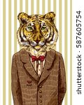 tiger in jacket. vector... | Shutterstock .eps vector #587605754